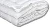 Одеяло Карбон Классическое-всесезонное фото мни (1)